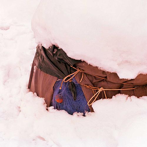 Rezza viola e neve