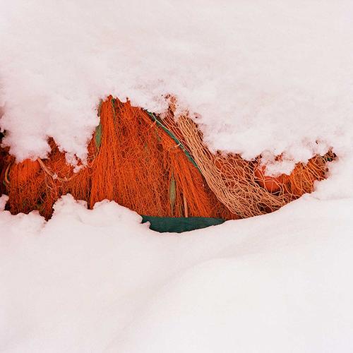 Rezza arancio e neve