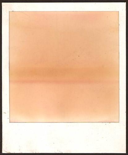Polaroid #7
