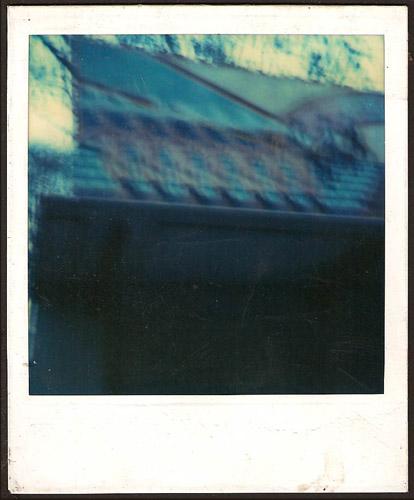 Polaroid #8