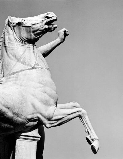 Cavallo di Polluce, Piazza del Quirinale