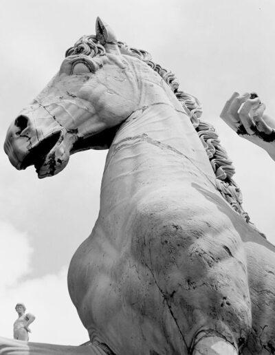 Cavallo di Castore, Cordonata Capitolina